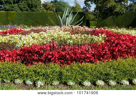 Flower Design In Garden