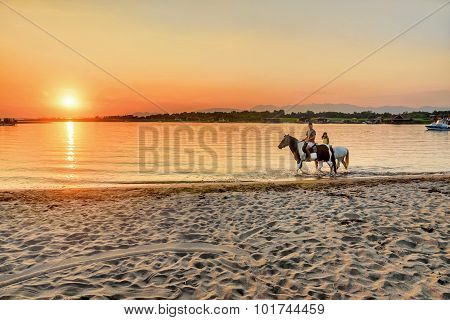 Young People Riding Horses In The Sunset By The Sea On The Island Of Ada Bojana, Montenegro