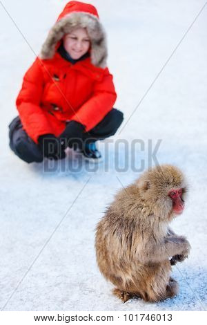 Teenage boy at Snow monkey Japanese Macaque park looking at monkey on snow in Nagano, Japan