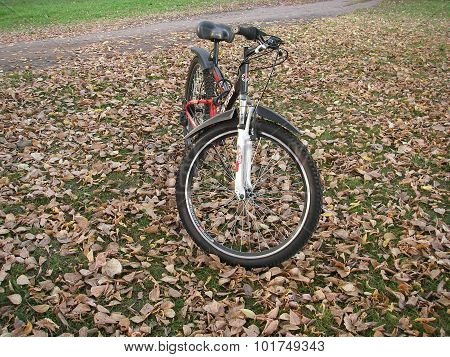 Bicycle walk