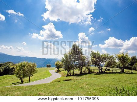 Bucolic Country Landscape