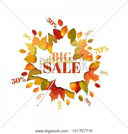 Autumn Sale - Colorful Autumn Leaves Background - in vector