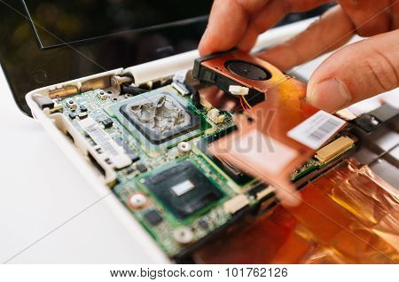 Warranty Service Of The Laptop (pc, Computer)