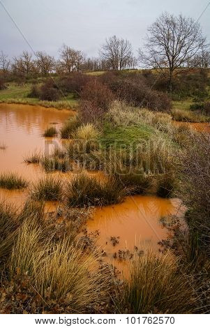 Unusual Orange Color Of The Water In The Small Lake