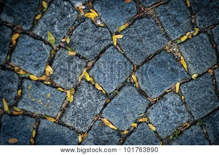 Detail Of Pavement With Tiny Yellow Autumn Leaves