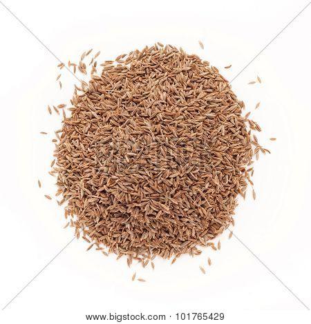 Top view of Organic Cumin seed.