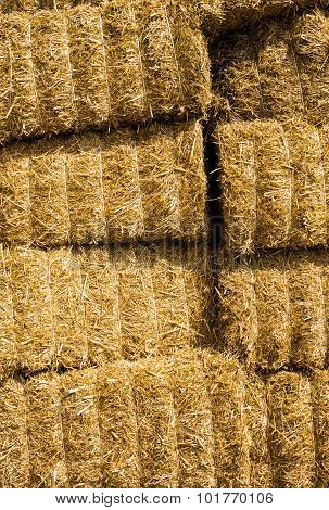 Square Golden Yellow Straw Bales