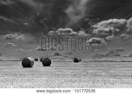 Round Straw Bales Landscape