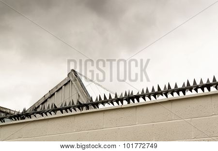Anti-intruder Spikes