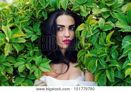 sexy woman in green leaves