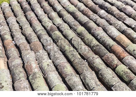 Traditional old tiled roof, seen in France
