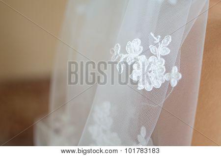 Lace Of Bridal Veil Closeup