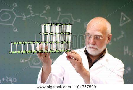 Man Compares Two Molecular Models