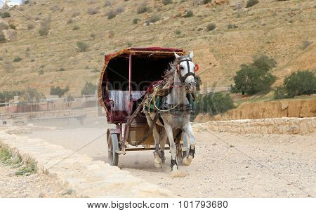 Tourist Transport (carriage) In Petra,  Jordan-- It Is A Symbol Of Jordan
