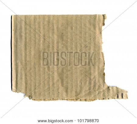 Brown corrugated cardboard torn isolated on white background with place for text
