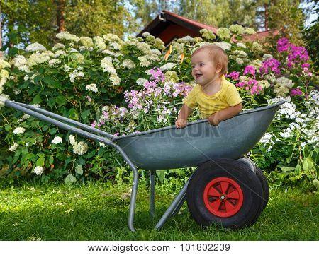 Little Boy Standing In Garden Barrow