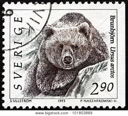 Postage Stamp Sweden 1993 Brown Bear