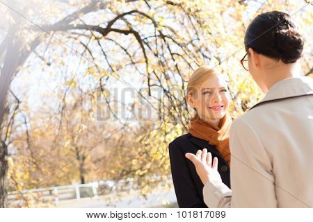 Businesswomen conversing at park on sunny day