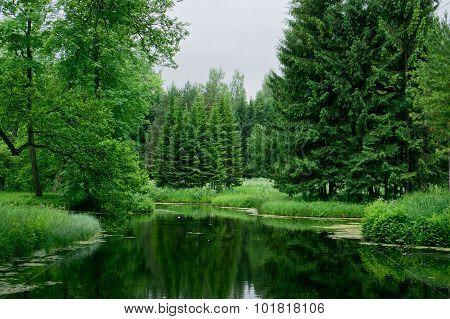 Pond and trees in Tsarskoye Selo (Pushkin). Catherine Park. St. Petersburg. Russia