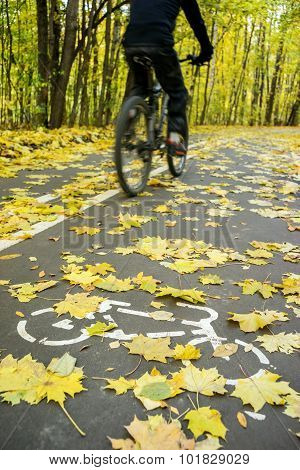 Cyclist In Motion On Road For Bicycle In Autumn