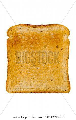 Slice of bread toasted on white