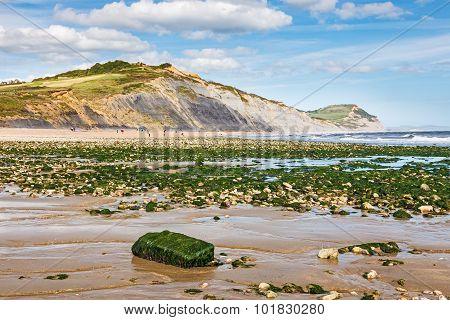 Charmouth Dorset England Uk