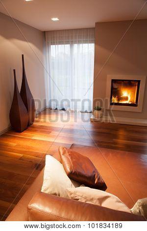 Cozy Elegant Living Room