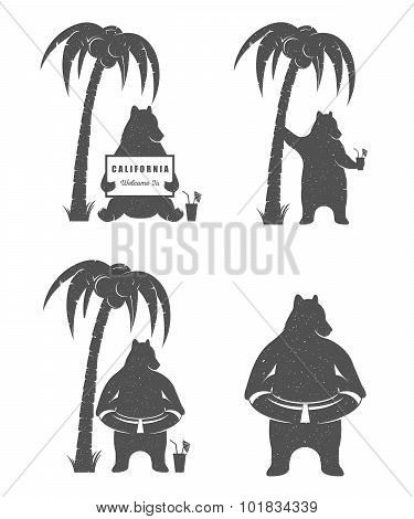 Vector Illustration Fun Bear