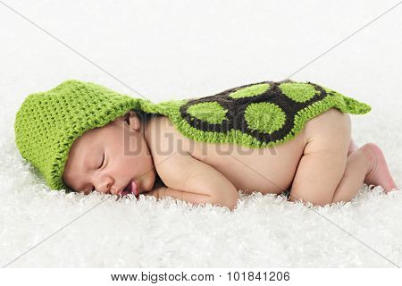 An adorable newborn sleeping contentedly on a fluffy blanket and covered with a hand-knit turtle hood and back.   On a white background