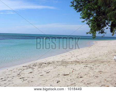 Looking Along A Beach In Fiji