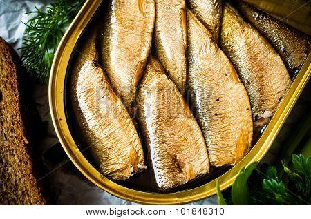 Sardines, Sprats