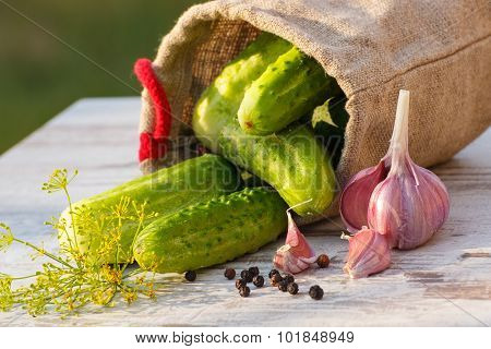 Cucumbers In Jute Bag And Spices For Pickling Cucumbers On Table On Sunny Day