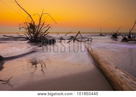 driftwood in the ocean at sunset, long time exposure