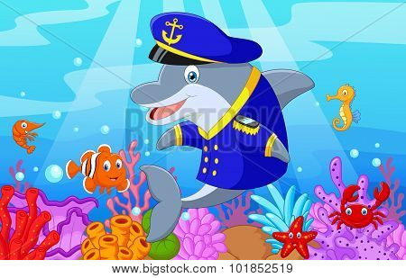 Standing little cartoon Dolphin using uniform Captain with collection fish