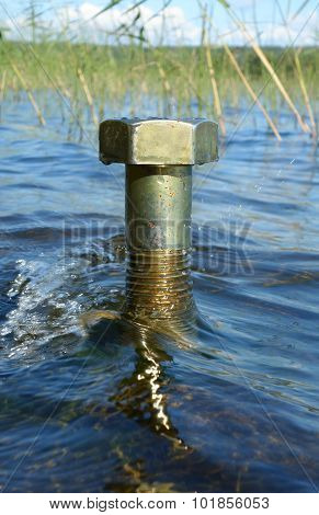 Brassy large female screw standing in a lake