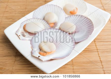Fresh Opened Scallop On The Wooden Table