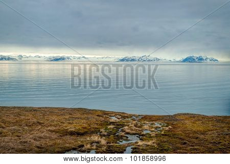 Arctic Tundra With Snowy Mountains And Ocean