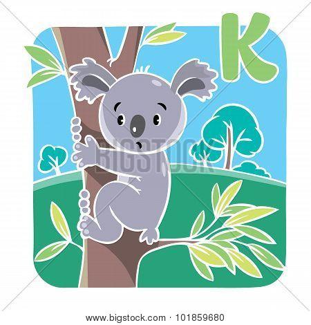 Funny koala. Alphabet K