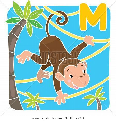 Little funny monkey on lians. Alphabet M