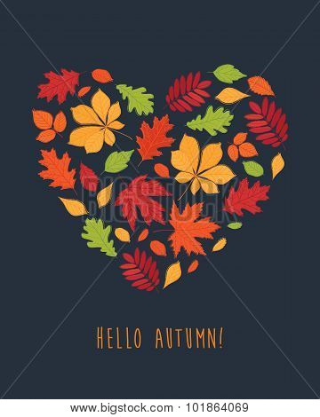 Hello autumn!