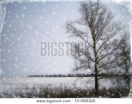 Stylized Christmas Card With Winter Landscape