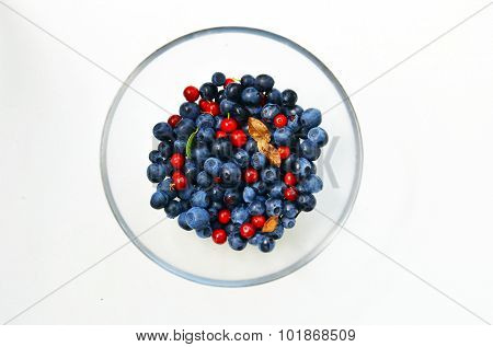 Blueberries And Cranberries.