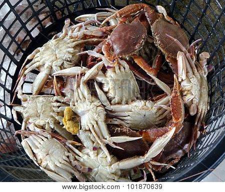 Basket With Fresh Crabs