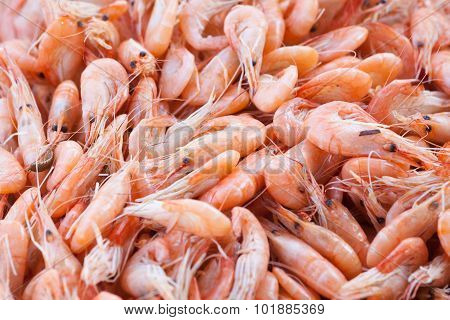 handful boiled of shrimps on a table