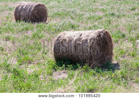 haystack in the field , summer day