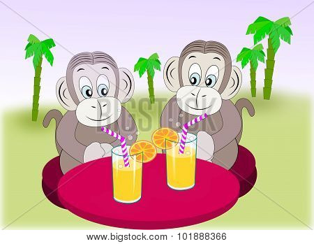 Monkey Friends with refreshment.