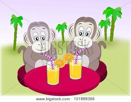 Monkey Friends with refreshment.