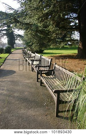 Park with long row of benches