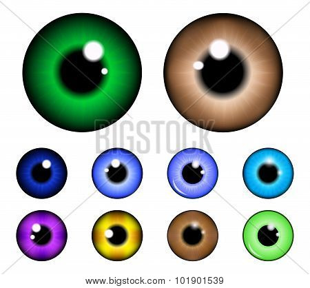 Set Of  Pupil Of The Eye, Eye Ball, Iris Eye. Realistic Vector Illustration Isolated On White Backgr