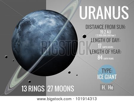 Uranus - Infographic presents one of the solar system planet, look and facts. This image elements fu